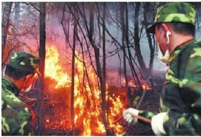 发生在云南省大理自治州剑川县的森林火灾
