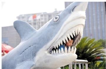 8月9日下午,长沙海底世界,小男孩爬到鲨鱼
