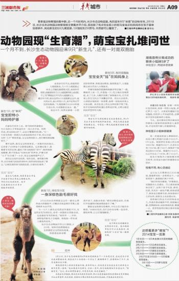 """动物园现""""生育潮"""",萌宝宝扎堆问世"""