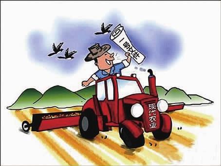 下一步将调整种植和产业结构,精细布局,组织和管理,提高农业组织化和