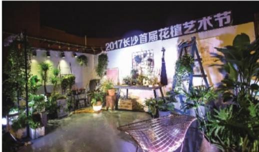 长沙首届花植艺术节开幕 即日起至27日市民可免费观赏